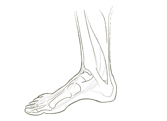 Welcome To London Foot and Ankle Surgery